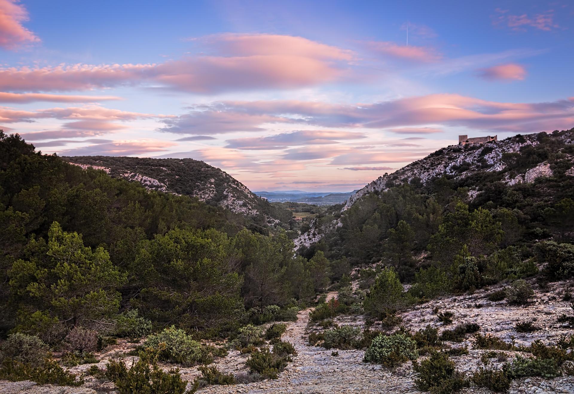 Languedoc Roussillon-France-dernière minute